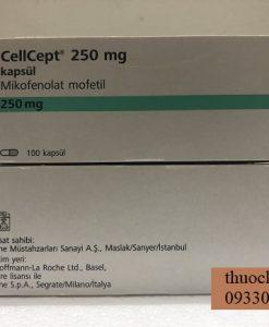 Thuoc CellCept 250mg Mycophenolate mofetil ngua thai ghep tang (3)