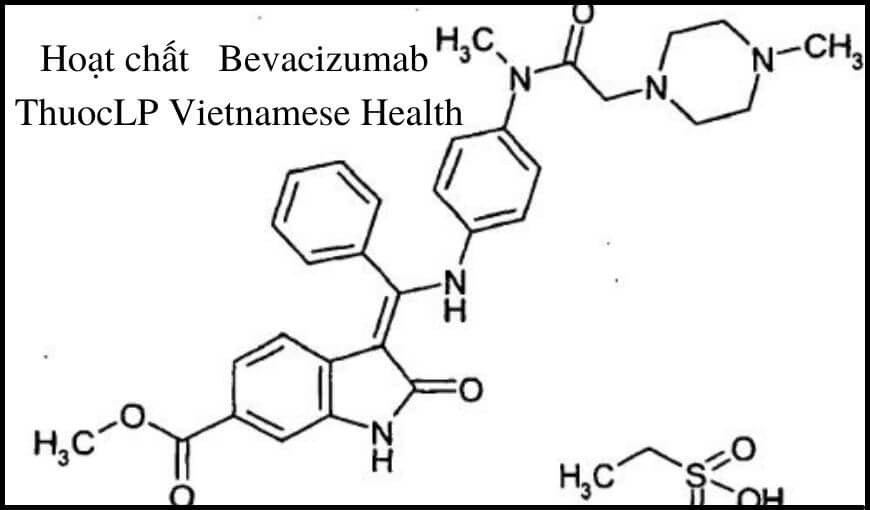 hoat-chat-bevacizumab-chi-dinh-tuong-tac-thuoc