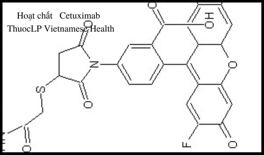 hoat-chat-cetuximab-chi-dinh-tuong-tac-thuoc