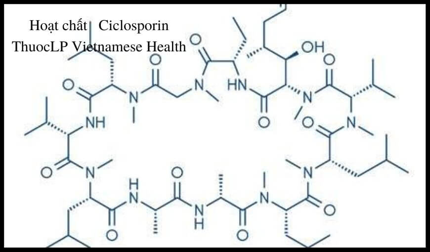 hoat-chat-ciclosporin-chi-dinh-tuong-tac-thuoc