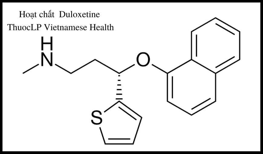 hoat-chat-duloxetine-chi-dinh-tuong-tac-thuoc