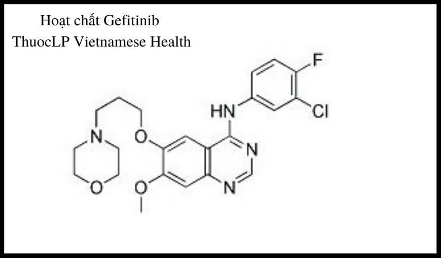 hoat-chat-gefitinib-chi-dinh-tuong-tac-thuoc