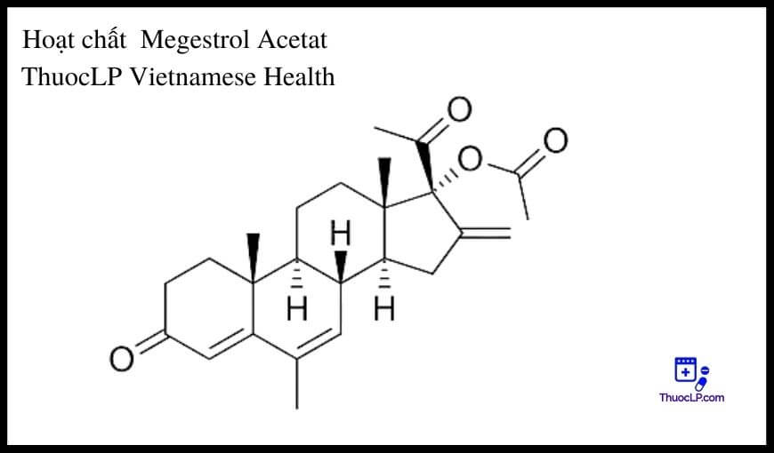 hoat-chat-megestrol-acetat-chi-dinh-tuong-tac-thuoc
