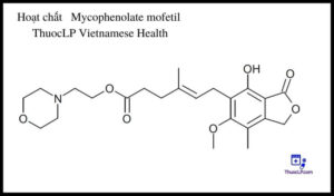 hoat-chat-mycophenolate-mofetil-chi-dinh-tuong-tac-thuoc