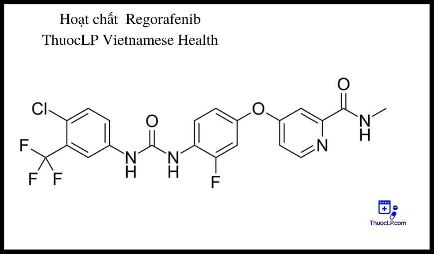 hoat-chat-regorafenib-chi-dinh-tuong-tac-thuoc
