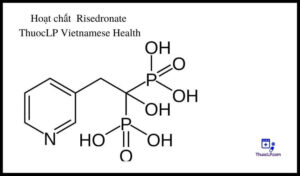 hoat-chat-risedronate-chi-dinh-tuong-tac-thuoc