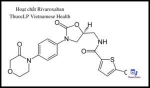 hoat-chat-rivaroxaban-chi-dinh-tuong-tac-thuoc