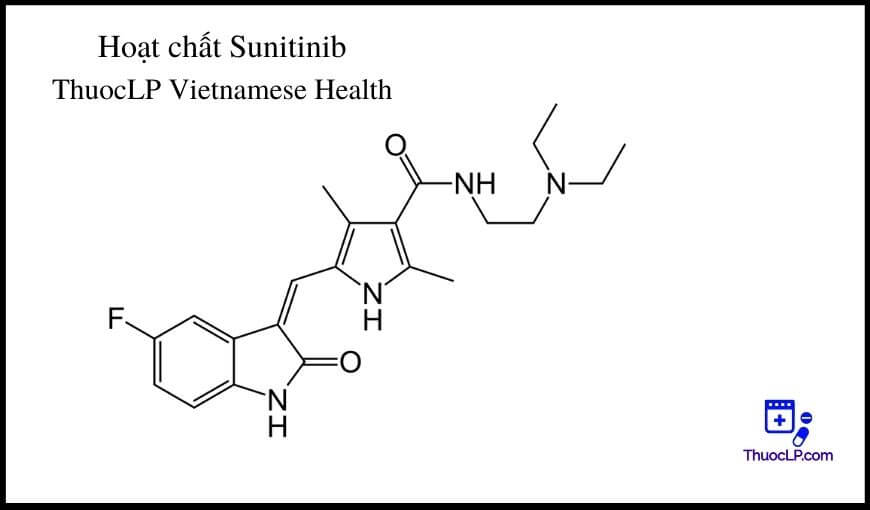 hoat-chat-sunitinib-chi-dinh-tuong-tac-thuoc