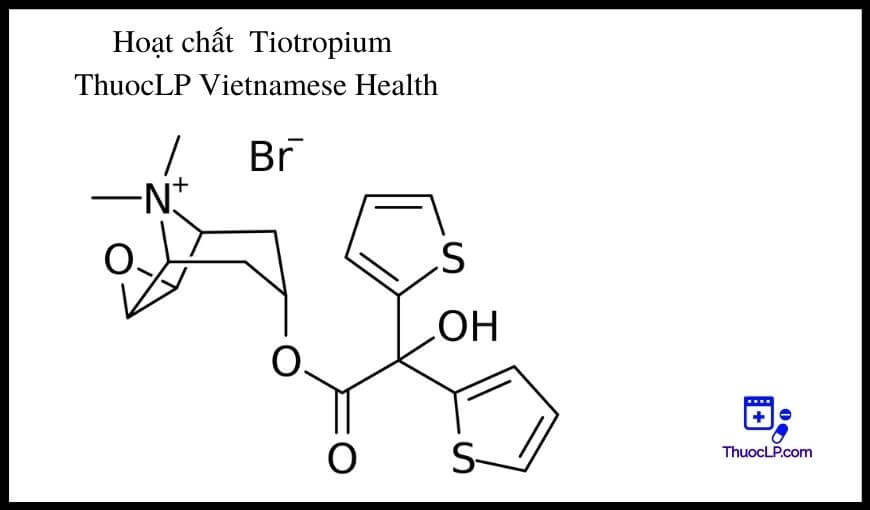 hoat-chat-tiotropium-chi-dinh-tuong-tac-thuoc