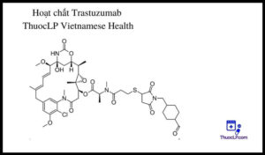 hoat-chat-trastuzumab-chi-dinh-tuong-tac-thuoc